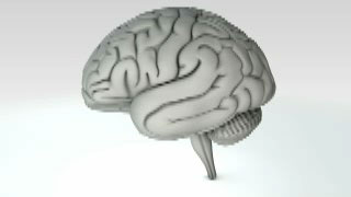 NeurometPlus